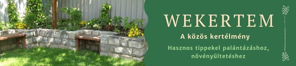 WEKERTEM - Kertészkedünk